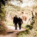 La renta vitalicia y los jubilados