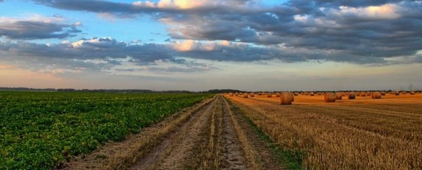 agroseguros para el campo