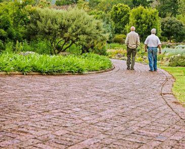 jubilados con seguro de renta vitalicia