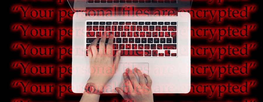 prevencion ciber seguros